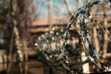 Barbed wire close-up. Conclusion, restriction of freedom.