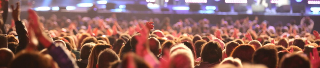 guys and girls of the audience during live concert from the pop star