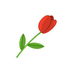 Vector Single Tulip Flower Icon