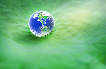Earth on Lotus leaf, Elements of this image furnished by NASA..
