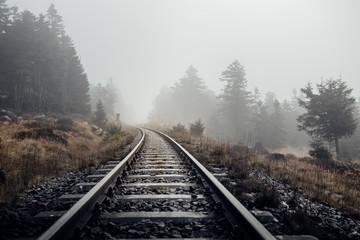 Eisenbahnschienen führen durch eine neblige Landschaft im Harz