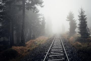 Die Bahnschienen der Dampflok führen durch den Nebel Wald