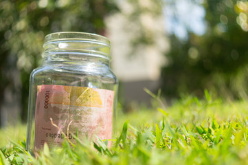 Rupiah Paper Money in jar on Green Nature Background