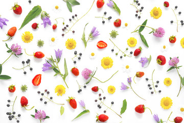 Fototapete - Composition pattern from plants, wild flowers and  berries, isolated on white background, flat lay, top view. The concept of summer, spring, Mother's Day, March 8.