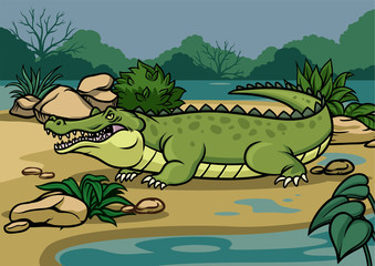 crocodile illustration in the nature