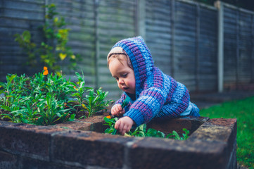 Cute little baby doing gardening