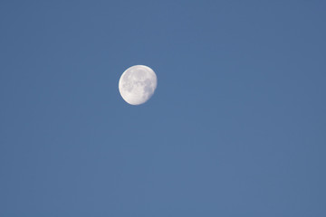 close up of moon in the morning on blue sky background