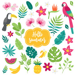 Set of tropical elements. Toucan, macaw, bamboo, pineapple, orchid, watermelon