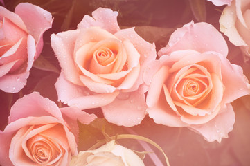 Creamy dreamy pink roses bouquet