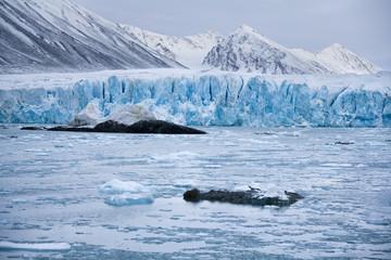 Keuken foto achterwand Gletsjers Monaco Glacier - Svalbard Islands (Spitsbergen)