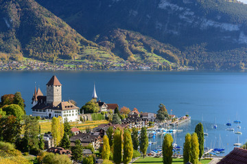 View of lake Thun in Switzerland during autumn season from Spiez train station Wall mural