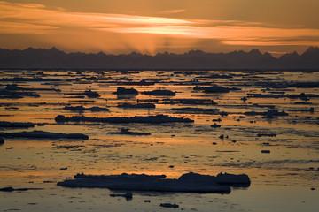 Photo sur Aluminium Pôle Midnight Sun - Spitsbergen in the High Arctic