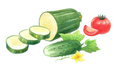 Still life of tomatoes, cucumbers and zucchini. Drawing with colored pencils, isolated on white background