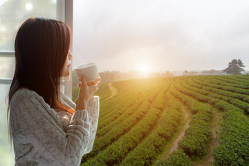 Asian woman fresh morning drinking hot tea and looking out of the window for see Tea Plantation and farm on sunny day. Copy Space.  Lifestyle Concept.