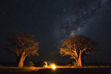 Foto op Canvas Baobab Camping under the milky way