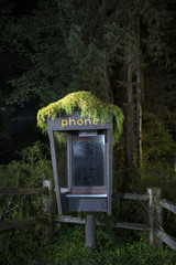 Abandoned telephone booth in forest at night