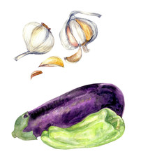 Garlic eggplant bell pepper watercolor clip art food fruit and vegetable collection harvest fall seasonal