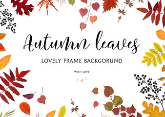 Vector floral watercolor style card design Autumn border, frame: colorful orange yellow brown red fall leaves berries, forest maple, oak tree branches. Greeting postcard invite decorative & copy space