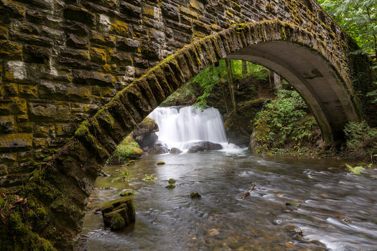Under the Waterfall in Whatcom Falls Park WA State USA