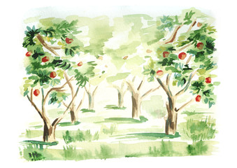 Fruit garden landscape. Hand drawn watercolor  template and background