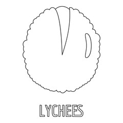 Lychee icon. Outline illustration of lychee vector icon for web