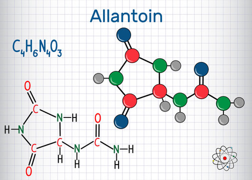 Allantoin (glyoxyldiureide) molecule, it is used in cosmetics. Structural chemical formula and molecule model. Sheet of paper in a cage