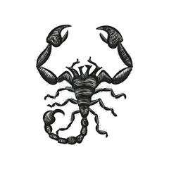 Scorpion vector. Spider.