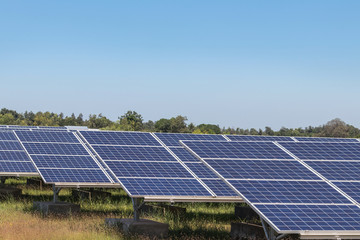 rows array of polycrystalline silicon solar cells in solar power plant turn up skyward absorb the sunlight from the sun use light energy to generate electricity  Fotoväggar