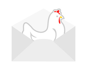 mail chicken hen poultry livestock animal image vector
