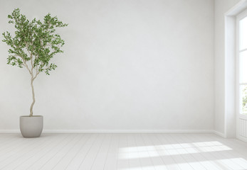 Wall Mural - Indoor plant on wooden floor with empty white concrete wall background, Tree near door in bright living room of modern scandinavian house - Home interior 3d illustration