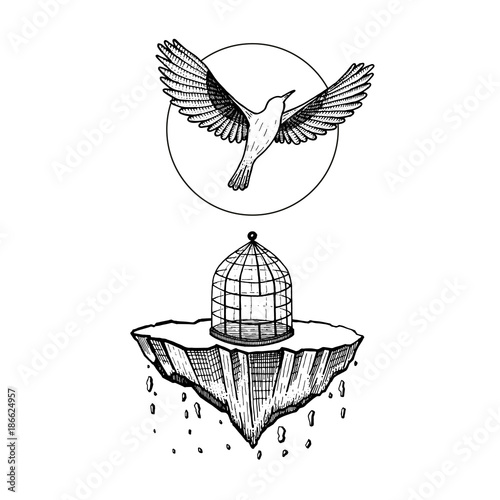 Bird Flying From Cage The World Collapses Stone Falling Bird Fly