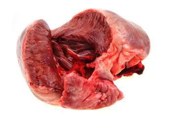 pig heart isolated