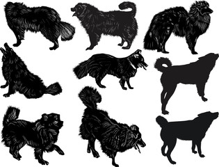 set of nine dogs sketches isolated on white