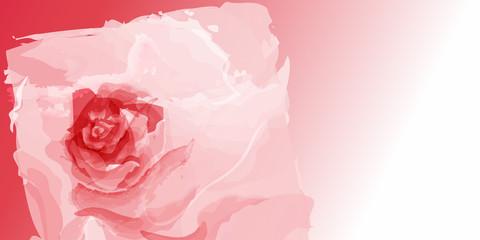 Fototapeta róża tło wektor obraz