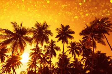 Palm trees silhouettes at sunset with party glitter lights bokeh overlay effect