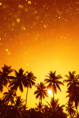 Palm trees silhouettes on tropical beach at summer warm vivid sunset with party glitter bokeh overlay effect