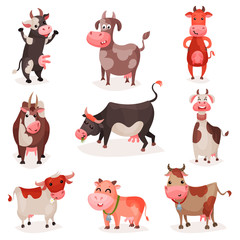 Cute cow characters set, funny cows in different positions cartoon vector Illustrations