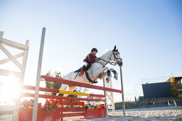 Side view of girl on white horse show jumoing over barrier in sunny day.