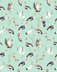 Watercolor african crane pattern
