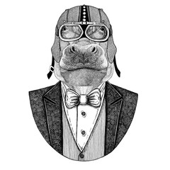 Hippo, behemoth, river-horse Animal wearing jacket with bow-tie and biker helmet or aviatior helmet. Elegant biker, motorcycle rider. Hand drawn image for tattoo, t-shirt, emblems, badge, logo, patch