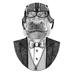 Hippo, behemoth, river-horse Animal wearing jacket with bow-tie and biker helmet or aviatior helmet. Elegant biker, motorcycle rider. Hand drawn image for tattoo, t-shirt, emblems, badge, logo, patch