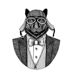 Panther Puma Cougar Wild cat Animal wearing jacket with bow-tie and biker helmet or aviatior helmet. Elegant biker, motorcycle rider, aviator. Image for tattoo, t-shirt, emblem, badge, logo, patch