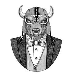 Buffalo, bison,ox, bull Animal wearing jacket with bow-tie and biker helmet or aviatior helmet. Elegant biker, motorcycle rider, aviator. Image for tattoo, t-shirt, emblem, badge, logo, patch
