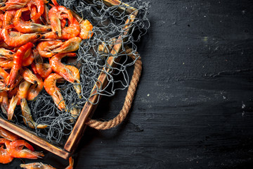 Wall Mural - Fresh shrimp in a fishing net on a tray.