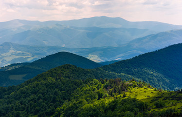 spot of light on a forested hills of Carpathians. lovely nature background in summertime on a cloudy day