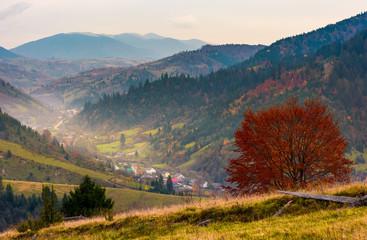 village in a beautiful valley in mountains. hazy autumnal landscape. location Mizhhirya, TransCarpathia, Ukraine