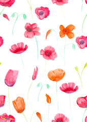 Hand painted with watercolor brush seamless pattern with red and orange poppies illustration isolated on white background