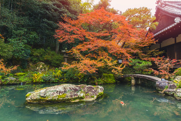 Beautiful autumn pond with koi fish japan garden at Nanzen-ji Temple