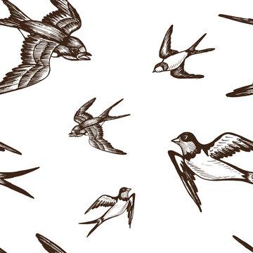 Vector illustration sketch Swallow. Pattern bird.