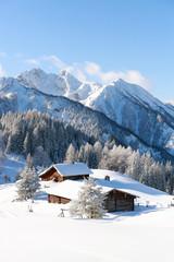 Fototapete - Snowy winter landscape. Austrian Alps